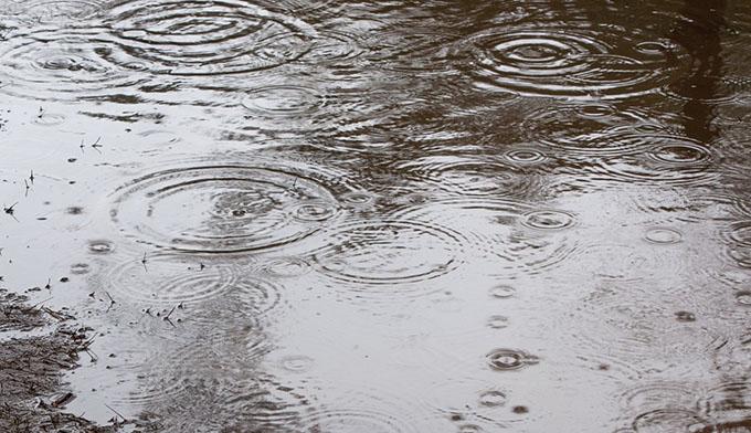 カーフレザーは雨(水)に弱い?